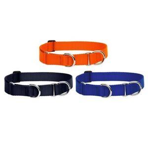 NEW Blaze Orange, Blue or Black Martingale Training Dog Collar by Lupine Basics