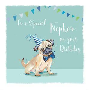 Nephew Pugs & Kisses Birthday Greeting Card The Wildlife Range Cards