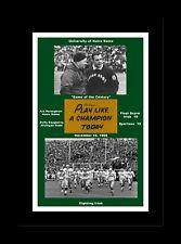NOTRE DAME FIGHTING IRISH ARA PARSEGHIAN 1966 MICHIGAN STATE GAME MATTED PHOTO