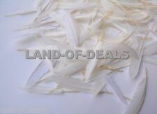 100 Natural White duck feathers, loose duck feathers, small feathers