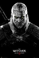 "THE WITCHER: WILD HUNT - GAMING POSTER (TOXICITY POISONING) (SIZE: 24"" x 36"")"