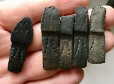 Great set of 5 Dasypus bellus Armadillo flex scutes osteoderms Pleistocene Fl