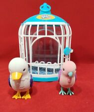 Little live pets Blue And White Cage With 2 Bird (D-3)
