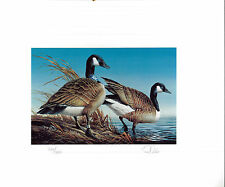 Minnesota #5 1981 State Duck Stamp Print Canada Geese by Terry Redlin