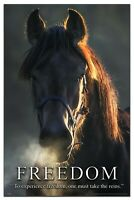 Horse Motivational Poster Art Print 11X17 Western Cowgirl Rodeo Wall Decor Gift