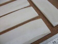 Large Flat Bone Blank 135 x 35  mm Box Restoration
