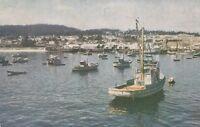 (U)  Monterey Harbor, CA - Fishing Fleet at Anchor - Waterfront Area
