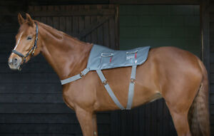 Equilibrium MASSAGE PAD Horse Back Circulation Muscle Relax Pony, Standard & XL