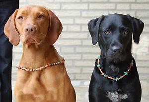 Bernsteinkette Zeckenhalsband Zeckenschutz für Hunde
