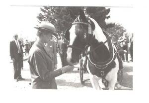 d9595 - Princess Alexandra in Sark in 1990 - Royalty postcard