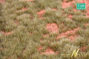 Scale Scenery - 736-23S  - Grass Mat - Australian outback - early autumn