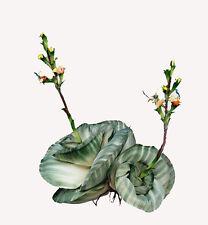 "18"" Psesilk Artificial Aloe Cabbage Flower Heads"