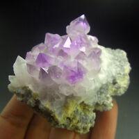 Recrystalized Amethyst Purple Quartz Crystal Cluster-qze0220