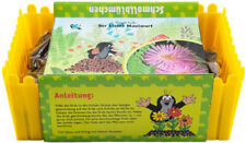 """Mein Minigarten """"Der kleine Maulwurf"""" - Schmollblume kompl. Anzucht und Aussaat"""