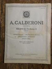 Catalogo anelli orecchini argenteria artistica posate ecc Calderoni Milano  1926