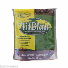 Centipede Grass Seed Tifblair Certified - 1 Lb.