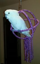 Purple Large Parrot 3 Ring Orbit Preening Swing Perch Cotton Rope