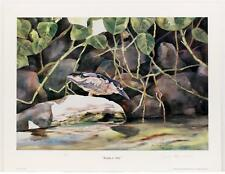 Vintage JOYCE GAGEN Realism Wildlife Animals Birds Nature Lithograph SIGNED #45