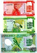 LOT SET SERIE 3 BILLETS Gambie GAMBIA Dalasis ND 2015 OISEAU DR JAMMEH UNC NEUF