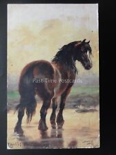 Horse Studies ENGLISH CART HORSEL After Harry Payne c1938 by Raphael Tuck 9138