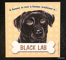 Black Lab Magnet Dog Display Anywhere Car Refrigerator Work File Cabinet