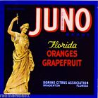 Bradenton Florida Juno Orange Citrus Fruit Crate Label Art Print
