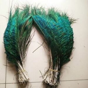 Peacock Feather With Natural Color & Symmetrical Size For Home Crafts Decoration