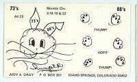 Ham Radio QSL Bunny Rabbit IDAHO SPRINGS CO Vintage Postcard