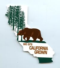 CS170-S - California Grown Bear Color Sticker