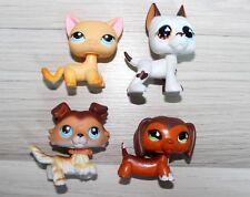 LITTLEST PETSHOP POPULAR SET CAT DOG CHAT CHIEN COLLIE DACHSHUND #58 675 339 577