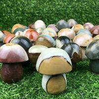"TOP! 2""Ocean Jasper Mushroom Crystal Hand Carved Skull Reiki Healing 1pc 50-100g"