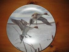 "David Maass 8"" Collector Plate, Migrants"