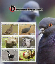 More details for malawi domesticated birds on stamps 2018 mnh ducks pigeons chickens 6v m/s