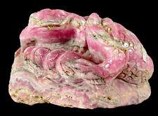 Butw Argentine natural rhodochrosite hand carved frogs sculpture 0136P ab