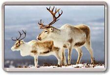 Aimant de réfrigérateur - Renne - Grand - Noël nature vie sauvage