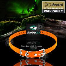 "Dogtra Replacement Dog Collar Strap 3/4""x 28"" Orange 280NCP 282NCP EF-3000Gold"