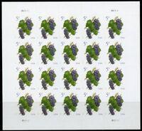 "United States 2017: ""Grapes"" sheet of twenty  5c  stamps (self adhesive) mint nh"