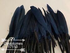 25 plumes d oie teintées de 12 à 14cm