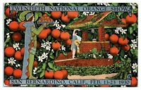 20th National Orange Show San Bernardino, CA 1930 Postcard *4R