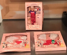 Sunrise In America Doll 1982 By Gata With 2 Outfits Christmas Sweetheart Nip