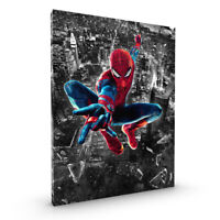 SPIDERMAN Stretched Canvas ~ More Size