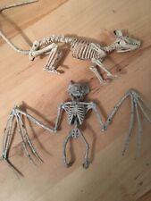 Skeleton Crazy Bones Bat & Rat Halloween Decorations New No Tags