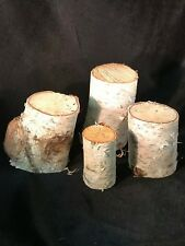 White Birch logs, 4 count, varies 3 inches to 4 inches long with diam of 2 1/2