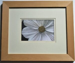 Original embroidery, Cosmos close up, Hazel Smith 2002, signed dated & framed