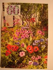 (NL1473) FLOWERS  ANEMONE (ANEMOON) 1982 NETHERLANDS maximum maxi card postcard