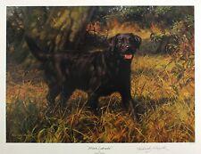 "Frederick heno ""Negro Labrador"" Perro firmado Lim Ed Tamaño: 49cm X 63cm Nuevo Raro"