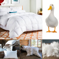 NEW 10.5T / 13.5T LUXURY HOTEL QUALITY GOOSE DUCK FEATHER & DOWN WARM DUVETS