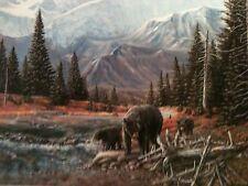 TTT: BLACK BEARS by  Carolyn Mock,  12 X 16 open edition art print, lithograph