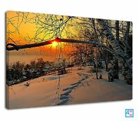 Lovely Winter Sunrise Between The Branch Of Tree  Canvas Print Wall Art Picture