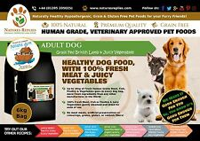 NEW Natural Healthy LAMB Flavour Grain Gluten Free Best ADULT DOG Food 6KG